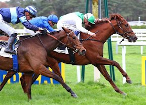 French Stakes Success for Invitational