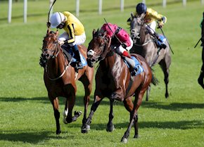 Two runners, two winners at Leicester