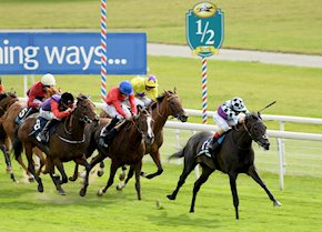 Gold Wand has magic touch to win Galtres Stakes at York