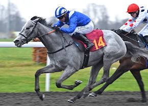 Zaajel sparkles on debut with easy win at Kempton