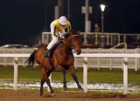 Father of Jazz Winter Derby preview