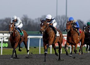 Troll Peninsula shines under the spotlights at Kempton